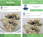 apple marijuana apps