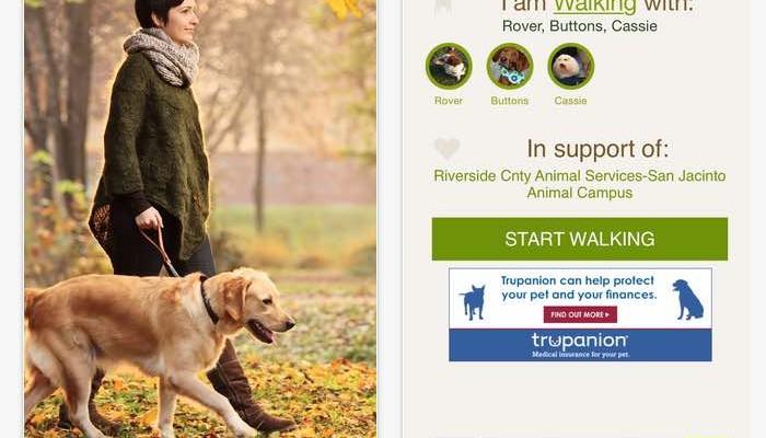 walk for a dog app