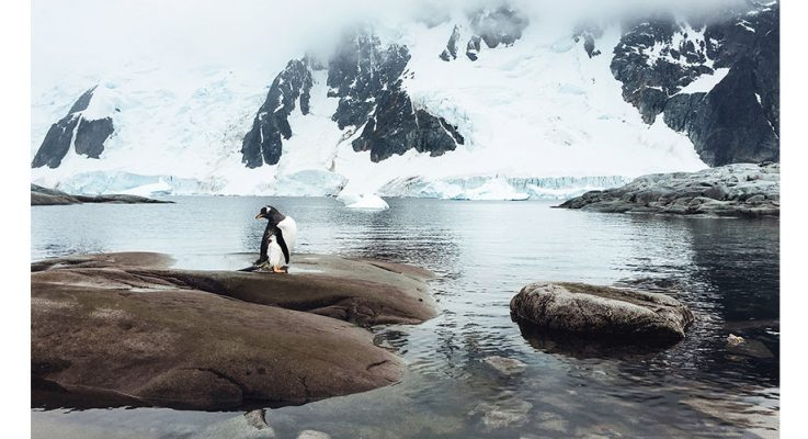 Breathtaking Photos of Antarctica Taken With an iPhone