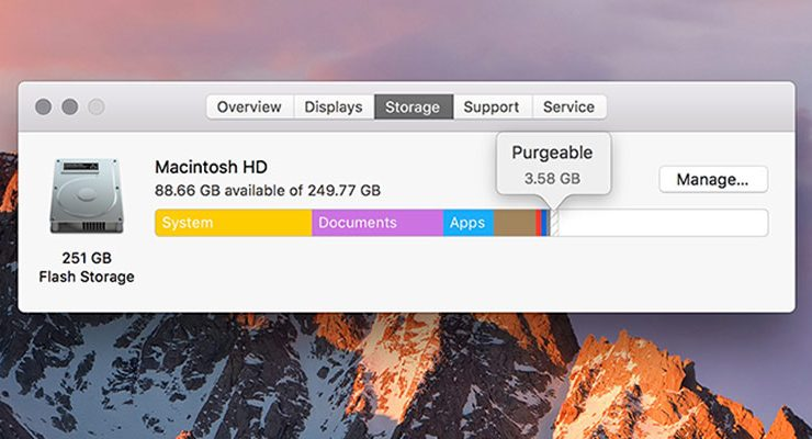 how to delete purgeable storage on mac