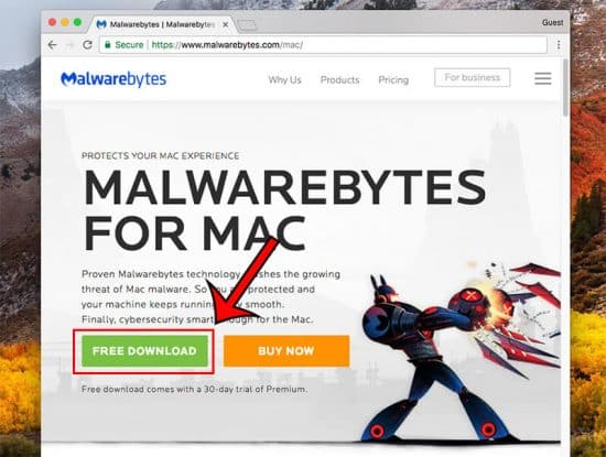 remove malware mac