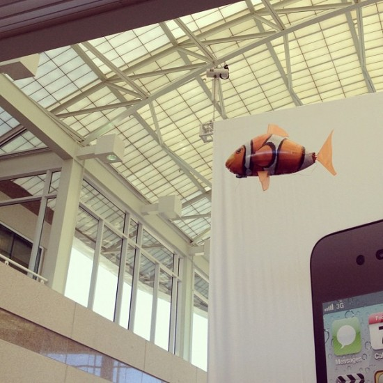One day, someone let loose an inflatable, radio controlled Nemo inside the IL1 atrium.