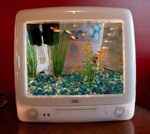 imac_aquarium