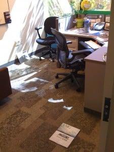 Apple HQ employee office