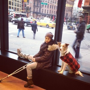 people-of-apple-stores-dog-dressed-as-human