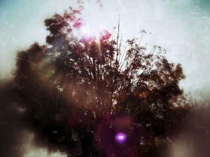 Lens Flare: After